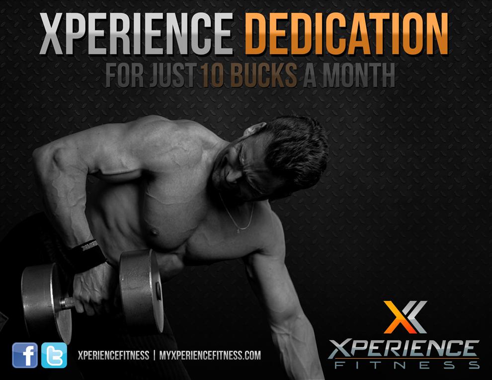 experience-dedication.jpg