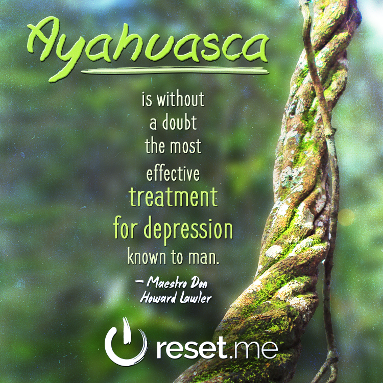 Meme03---Ayahuasca-is-Without-a-Doubt.jpg