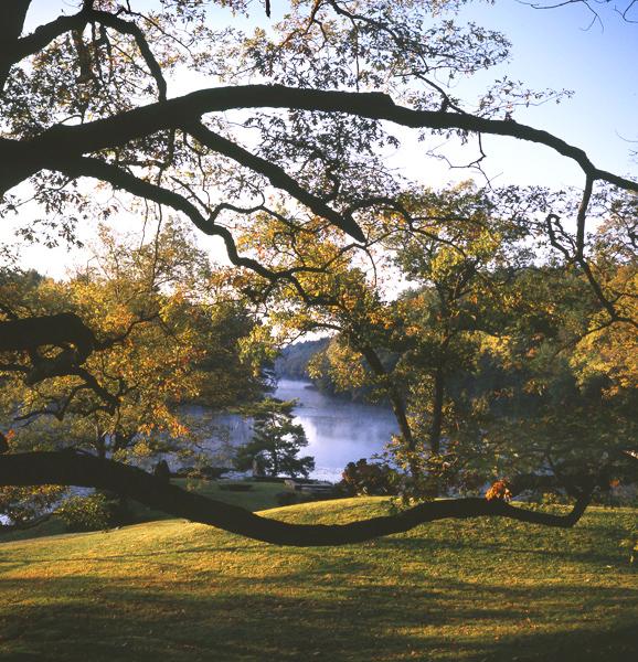 25 Innisfree Garden, Lester Garden, NY.jpg