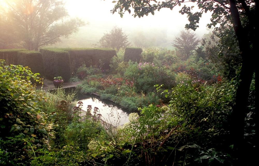 Hollister House pool:fog.jpg