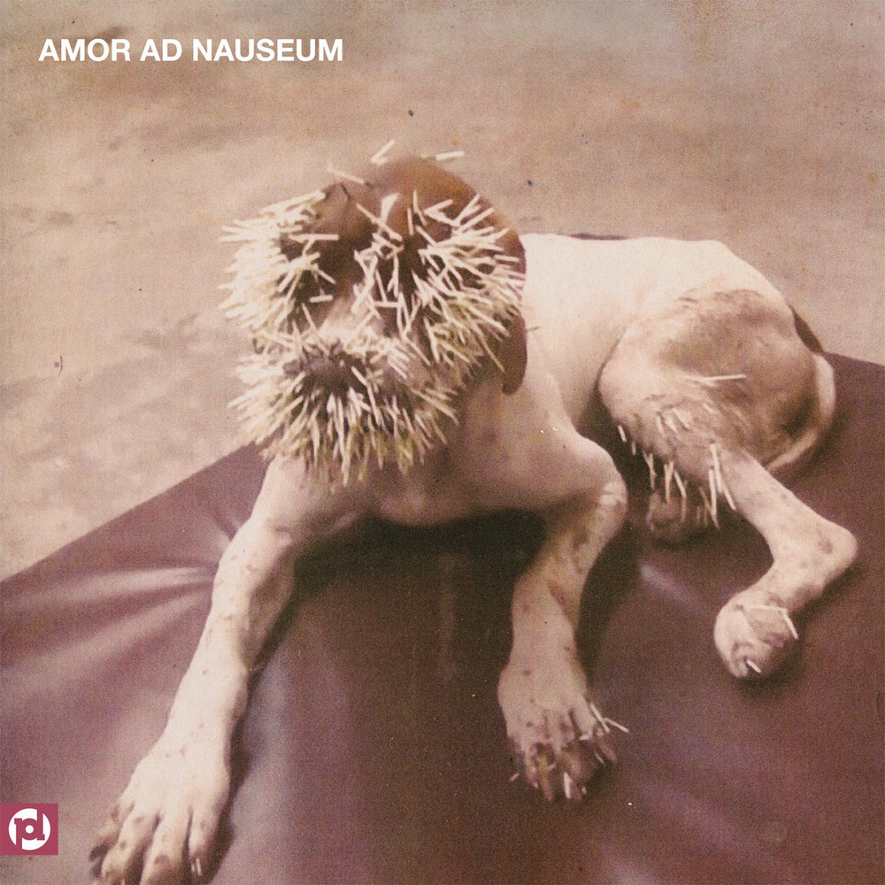 AAN - Amor Ad Nauseam - production / engineering / mixing
