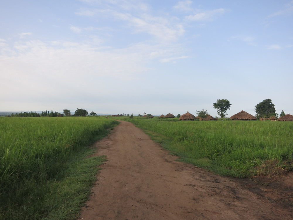 The children walk a long distance before arriving to school, over an hour.  Once they leave the village road, they must walk along the main road before arriving to school.
