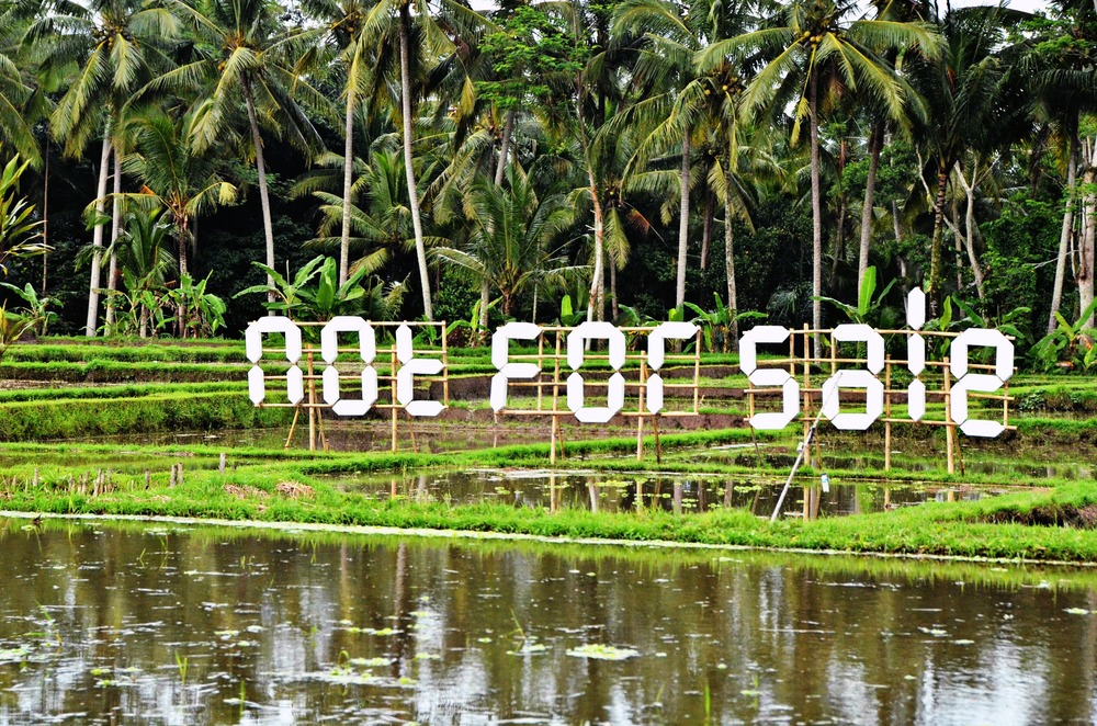 I tried to buy this Bali rice field, but they said no, no, no