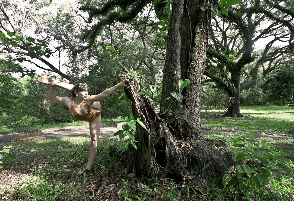 Davie, Florida  Photo by Yanni De Melo