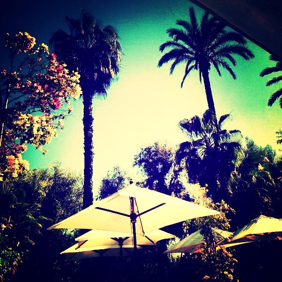 Hello Morocco.