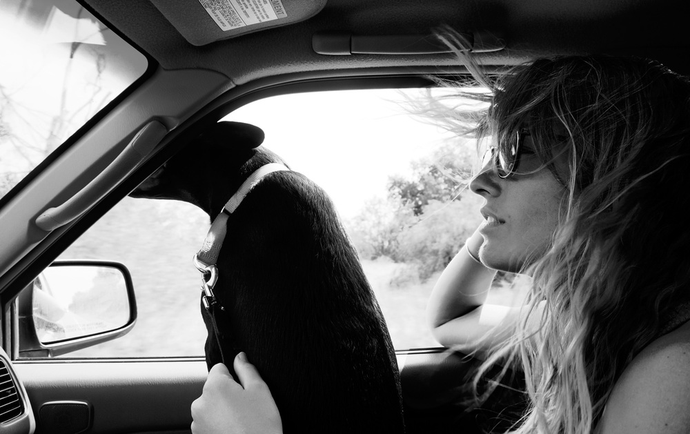 Allie_Car_Web.jpg
