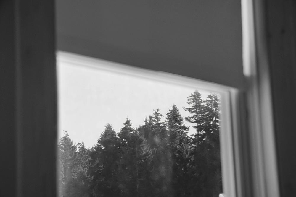 Window_web.jpg