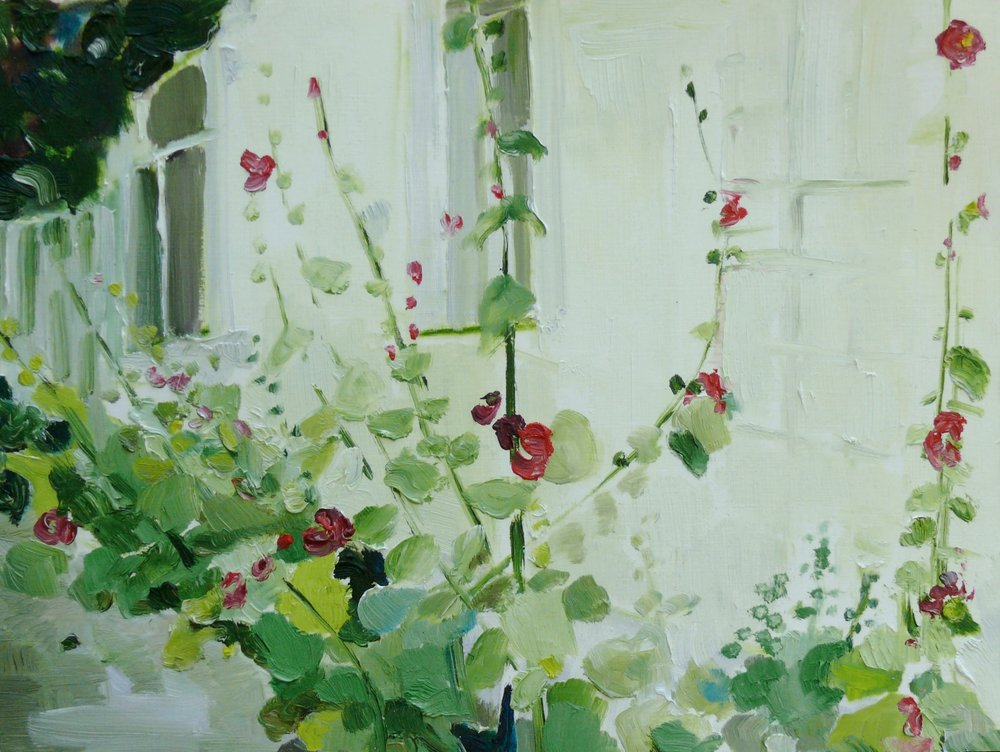 Stockrosen und Efeu, hollyhocks and ivy