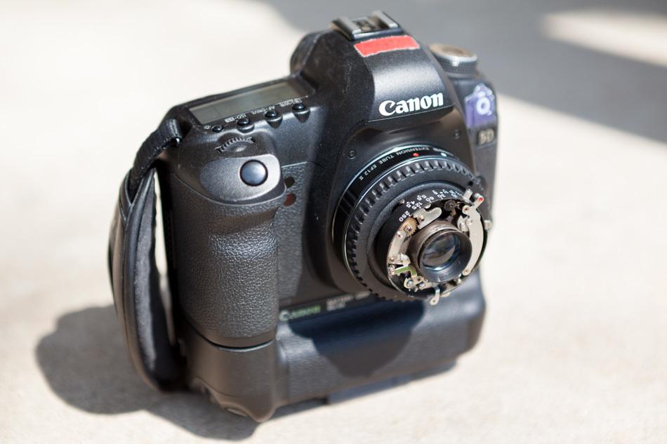 MG_8991.jpg