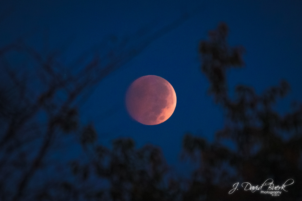 "A ""Blood Moon"" lunar eclipse in October, 2014."