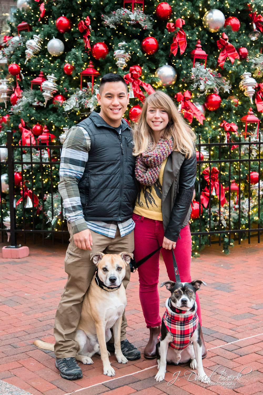 Leo and Chelsea and their two dogs, upon getting engaged at the skating rink at Reston Town Center, Reston, Virginia.  She said yes!