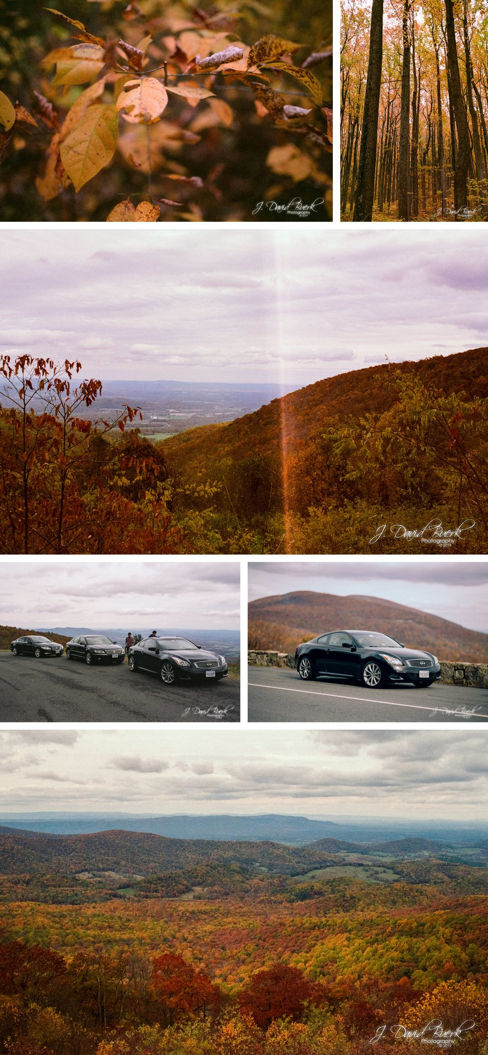 20151025 - Shenandoah National Park Skyline Drive - Film 2.jpg