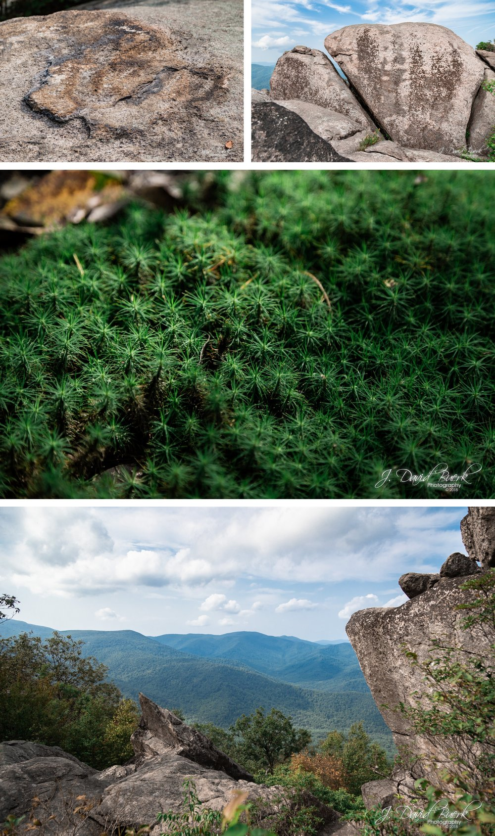 20180826 - Old Rag Mountain August 2018 10.jpg