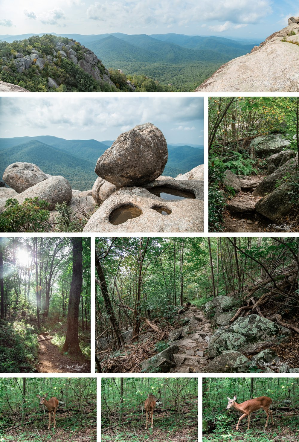 20180826 - Old Rag Mountain August 2018 11.jpg