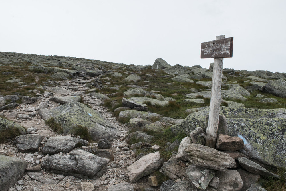 Trail junction below the summit