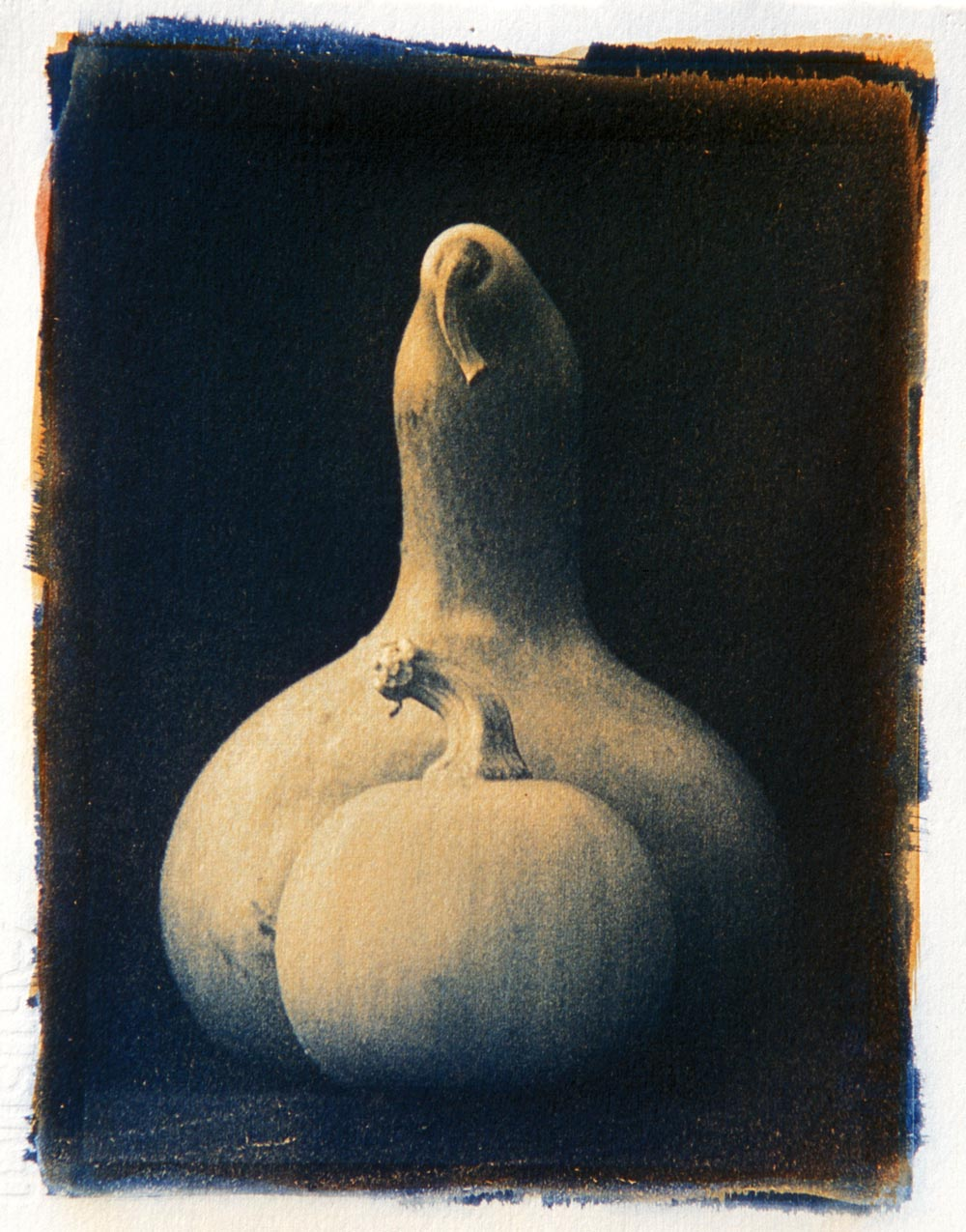 Gourds, One