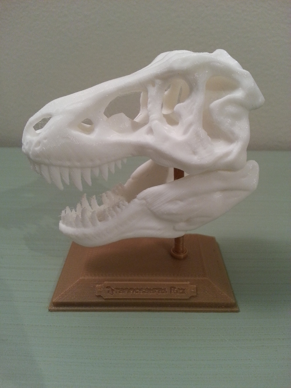 T-Rex Skull MakerGear M2 - 0.15mm layers - White & Gold PLA