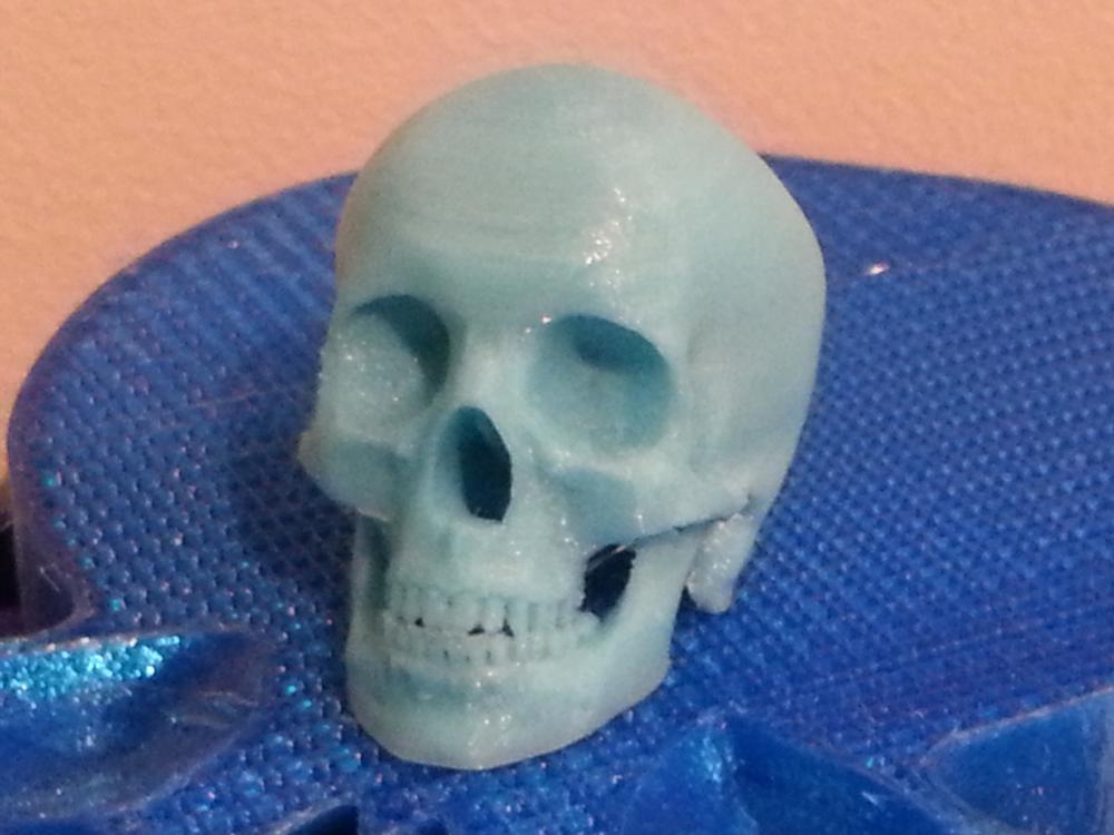 Tiny Human Skull