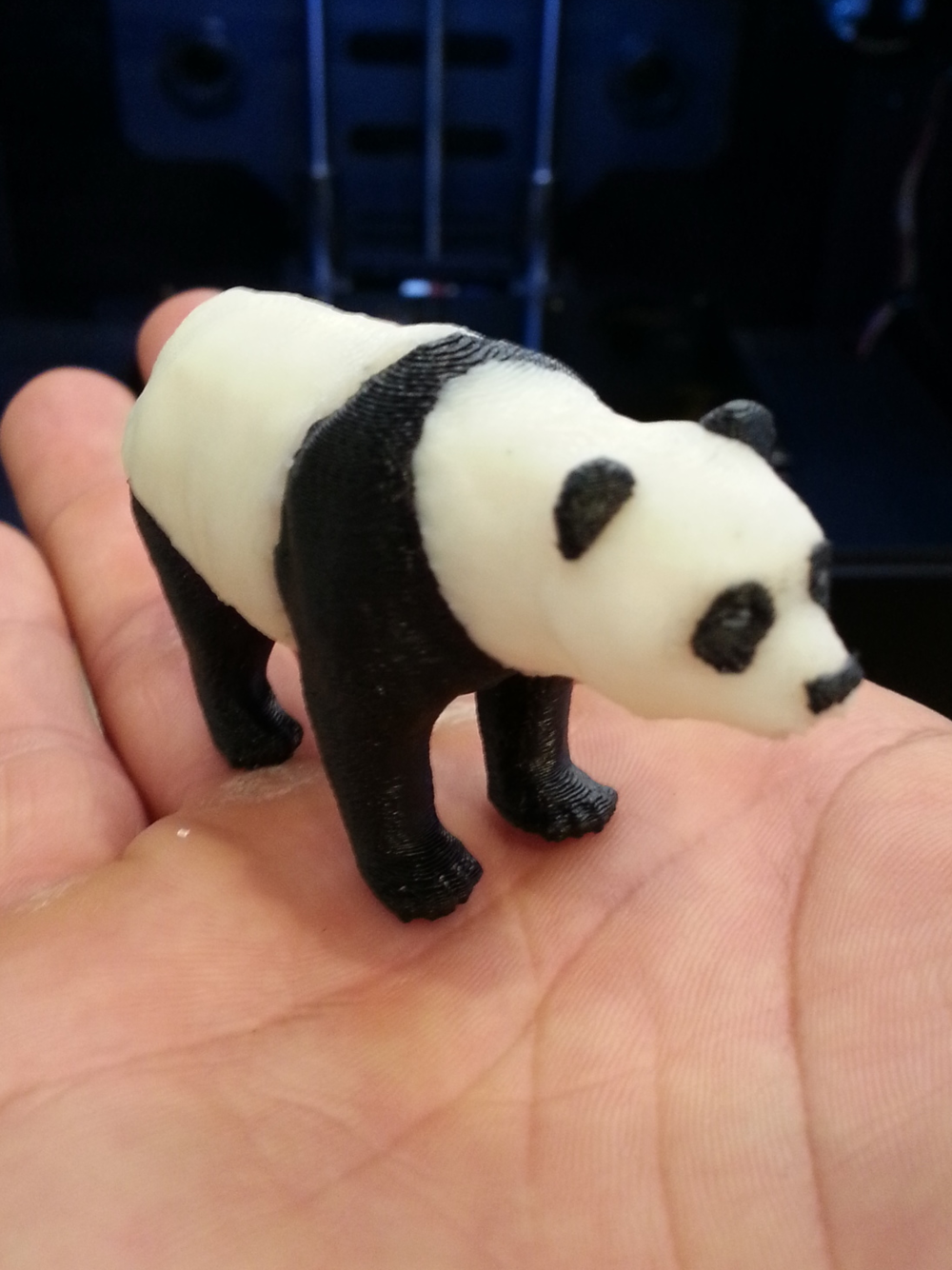 Two Color Panda Bear