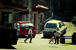 A bunch of kids playing soccer in the street. These street are really narrow, and is hard for cars to pass through, so they are generally safe. It seems the dog wants to play as well.