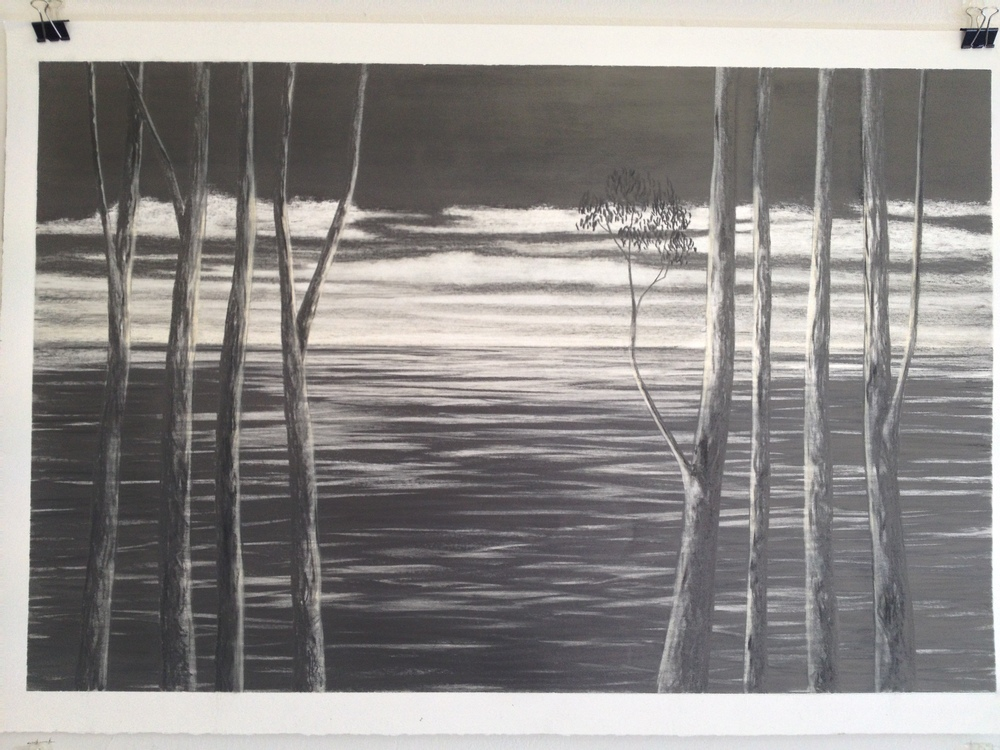 Graphite drawing, Robyn Mackay