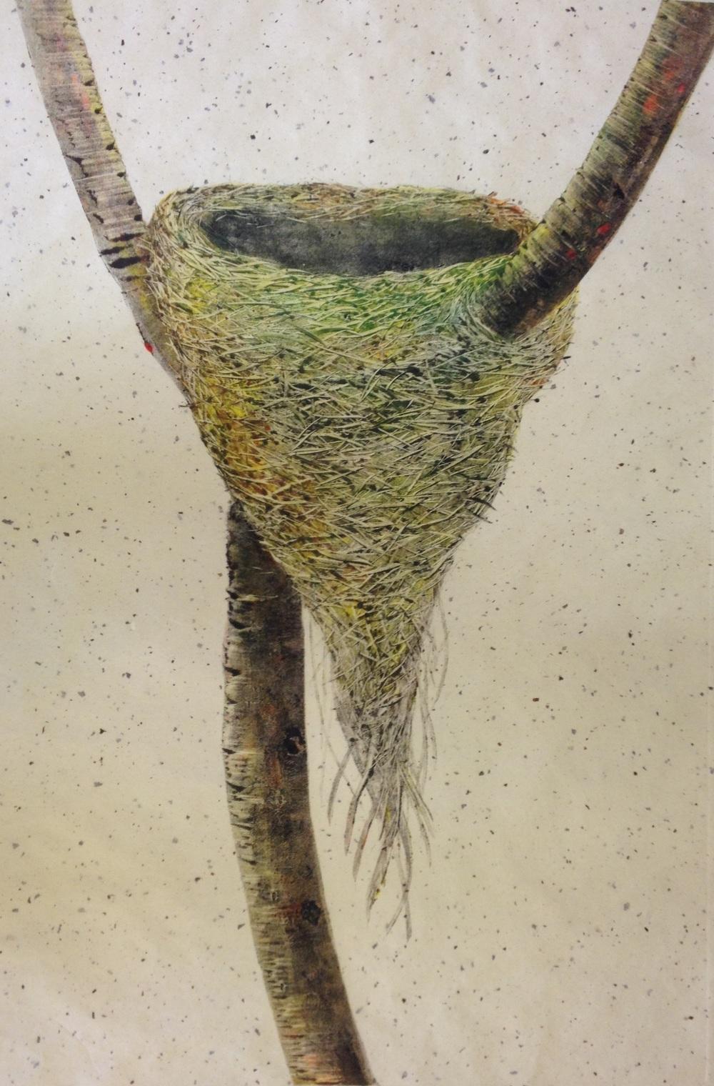'Empty Nest 11' Robyn Mackay