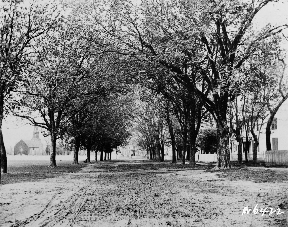 View looking west on present-day Nicholson Street towards the George Wythe House, ca. 1898 (Bruton Parish on left)