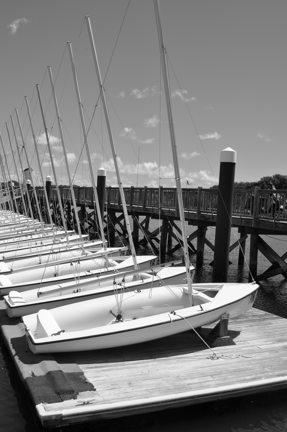 Sailboats In Waiting 1