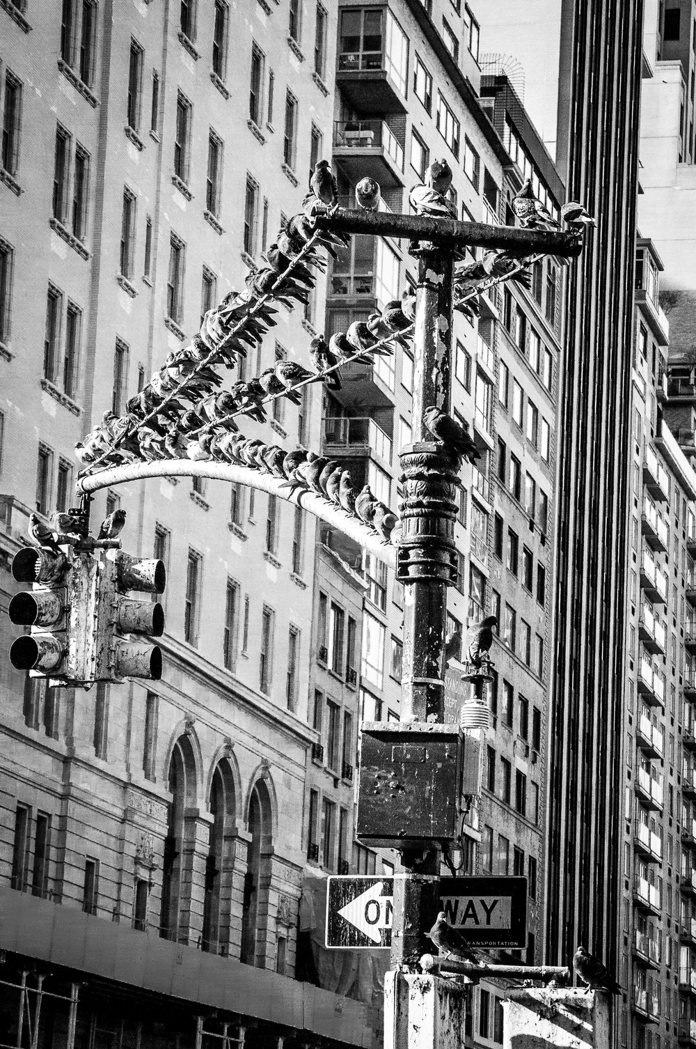 NYC13-26.jpg