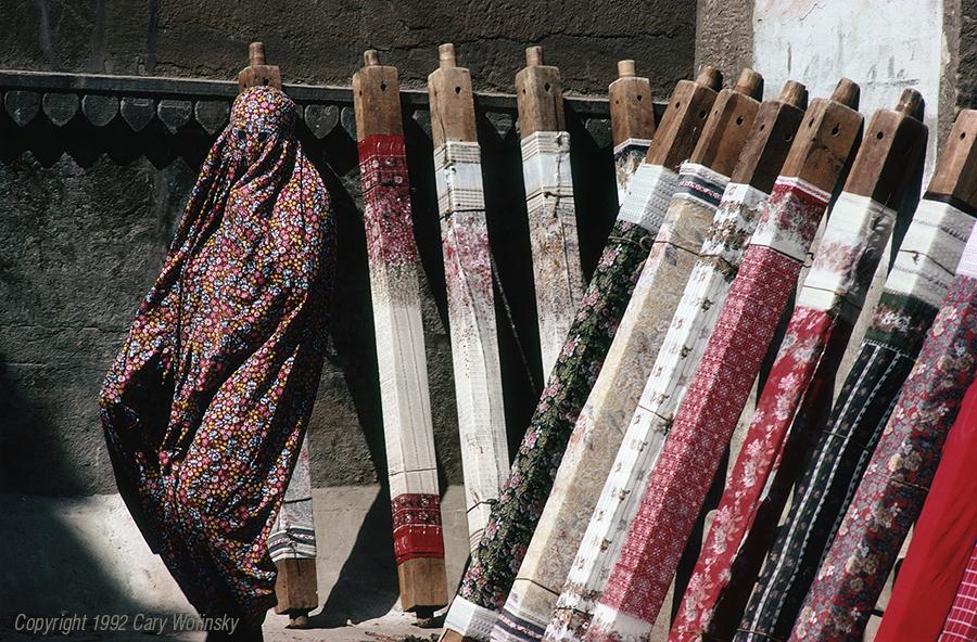 Among the Saris