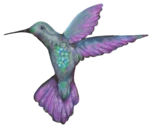 elemental+hummingbird+only+©+elemental.png