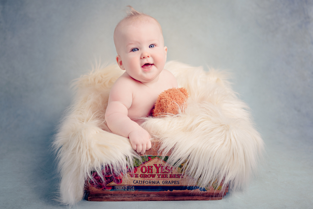 6 months - sitter - vintage crate - Louisa Nickel Photography