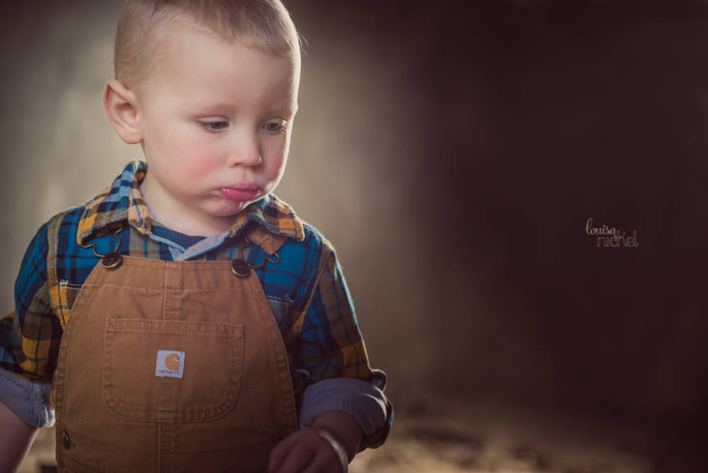 carhartt overalls - 2 year old toddler - Louisa Nickel Photography