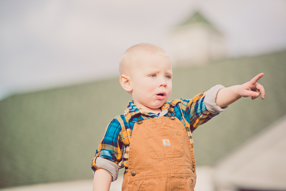 farm boy - 2 years old - overalls & plaid shirt - poses - Louisa Nickel Photography