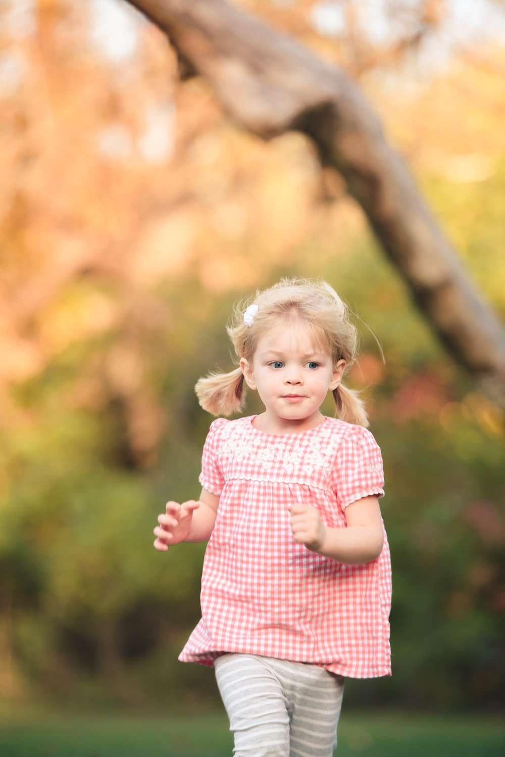 fall_portraits_rockford_arboretum_family_of_4-8.jpg