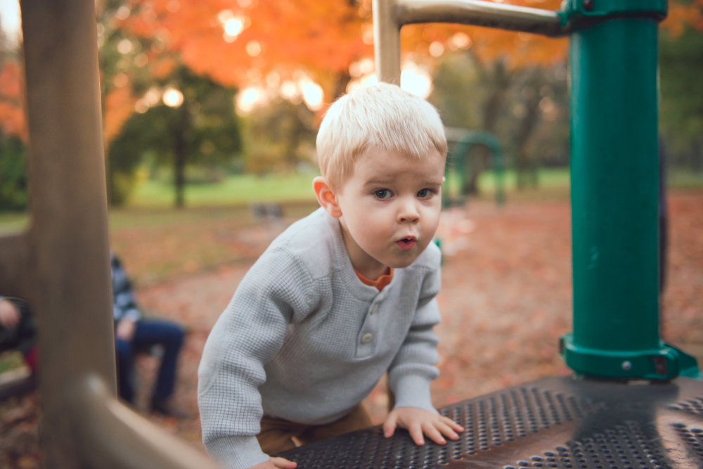fall lifestyle session with a toddler-21.jpg