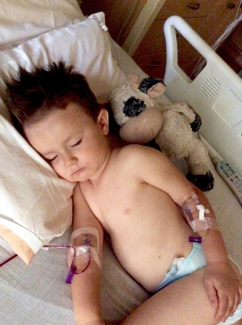 Harv_Leukemia-10.jpg