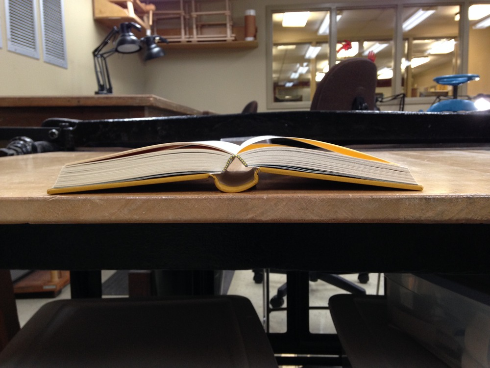 You can see where the thin board separates from the spine stiffener and spring when the book is opened.
