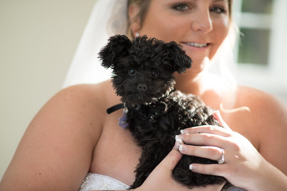 Cameron Estate Inn bridal portrait with puppy wedding photography photo_0127.jpg
