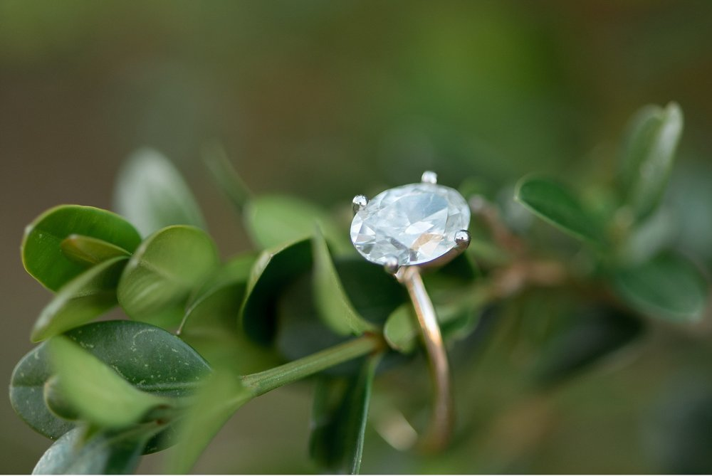 University of Delaware engagement session gorgeous ring details photo