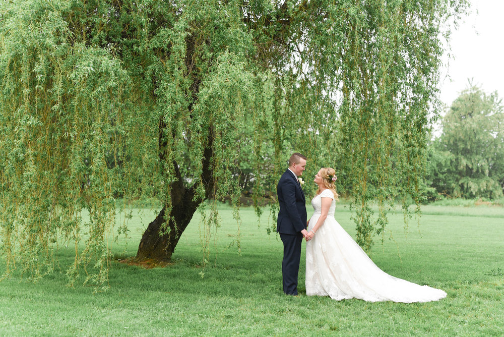 Willow-tree-bride-and-groom-portrait-Silverstone-Inn-and-Suites-Lancaster-PA-Wedding-Photography