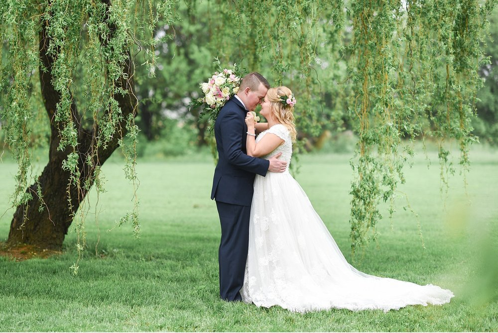 Bride-and-groom-under-willow-tree-Silverstone-Barn-Lancaster-PA-Wedding