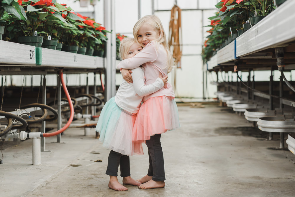 Sisters hugging in greenhouse with Christmas colors photography