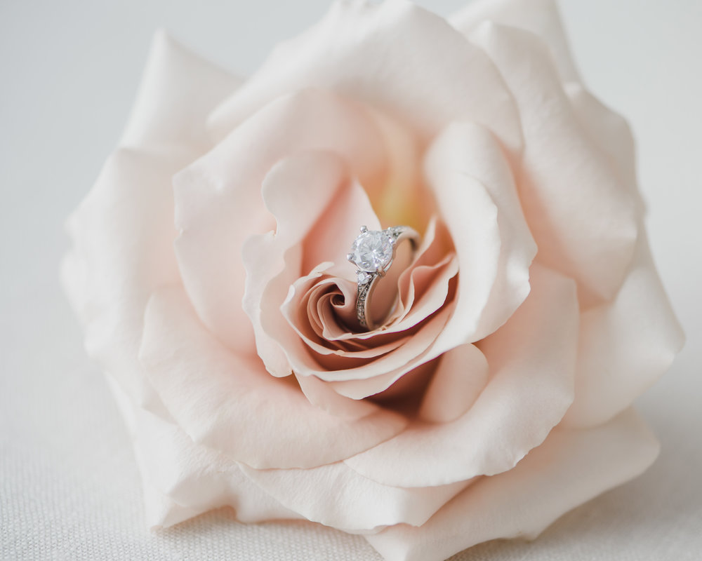 Blush rose with diamond detail image wedding photography