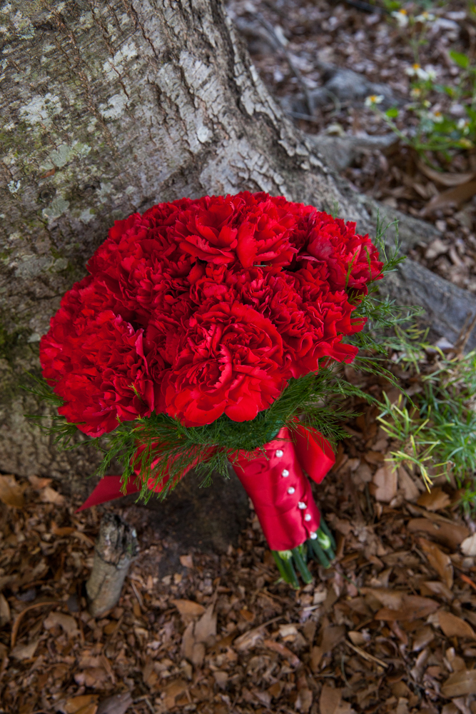 A simple red carnation bouquet