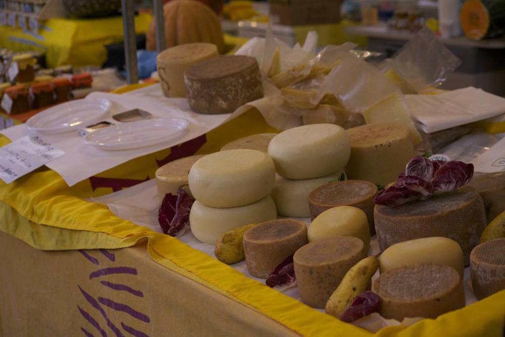 Sample the host's handmade pecorino cheeses.