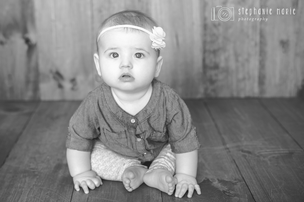 Stephanie Marie Photography, Centerville Ohio Portrait Photographer, Baby Milestone Portraits - 6 Months