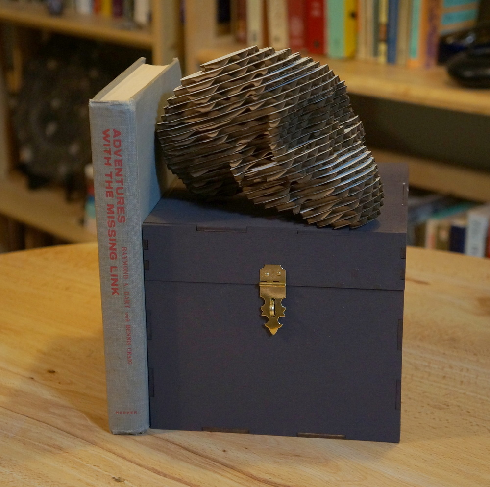 "The Box, the Taung Child,  Adventures With the Missing Link.  Author's ""artistic"" attempts.  (photo: L. Pyne)"
