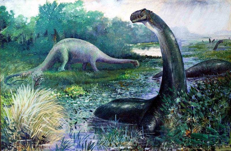 Brontosaurus, 1897. Charles Knight.
