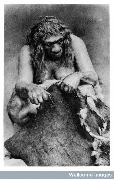 Credit: Wellcome Library, London.  Restoration of a Neanderthal woman cleaning a reindeer skin. Note the single, simple tool and lack of hand dexterity.